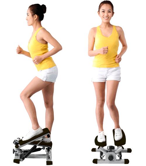 HORIZON Dynamic008 扭腰踏步機、小型踏步機