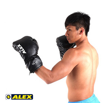 ALEX 拳擊手套 - 14 oz 訓練手套